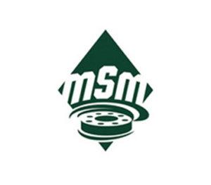 MSM_logo